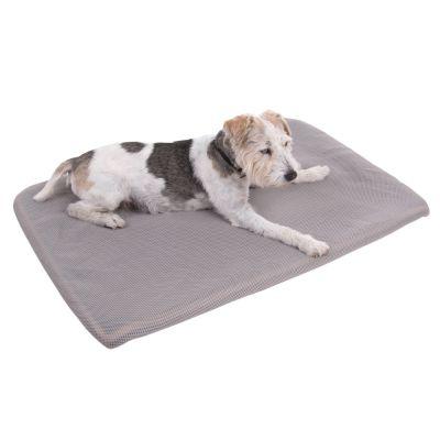 Sensopet tapis rafra chissant pour chien zooplus - Tapis rafraichissant pour chien ...