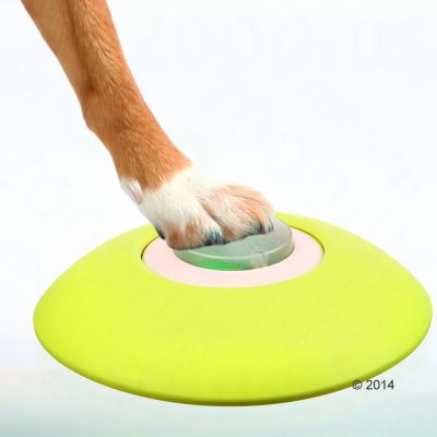 Trixie Dog Activity Memory Trainer Gioco Strategico 2.0