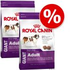 Varčno pakiranje Royal Canin Giant