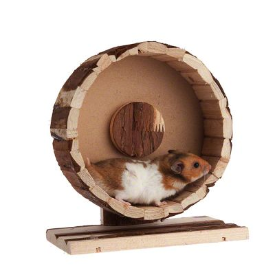 Wooden Exercise Wheel Speedy at zooplus