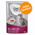 12 x 85 g Concept for Life All Cats 10+ Nassnahrung zum Probierpreis!